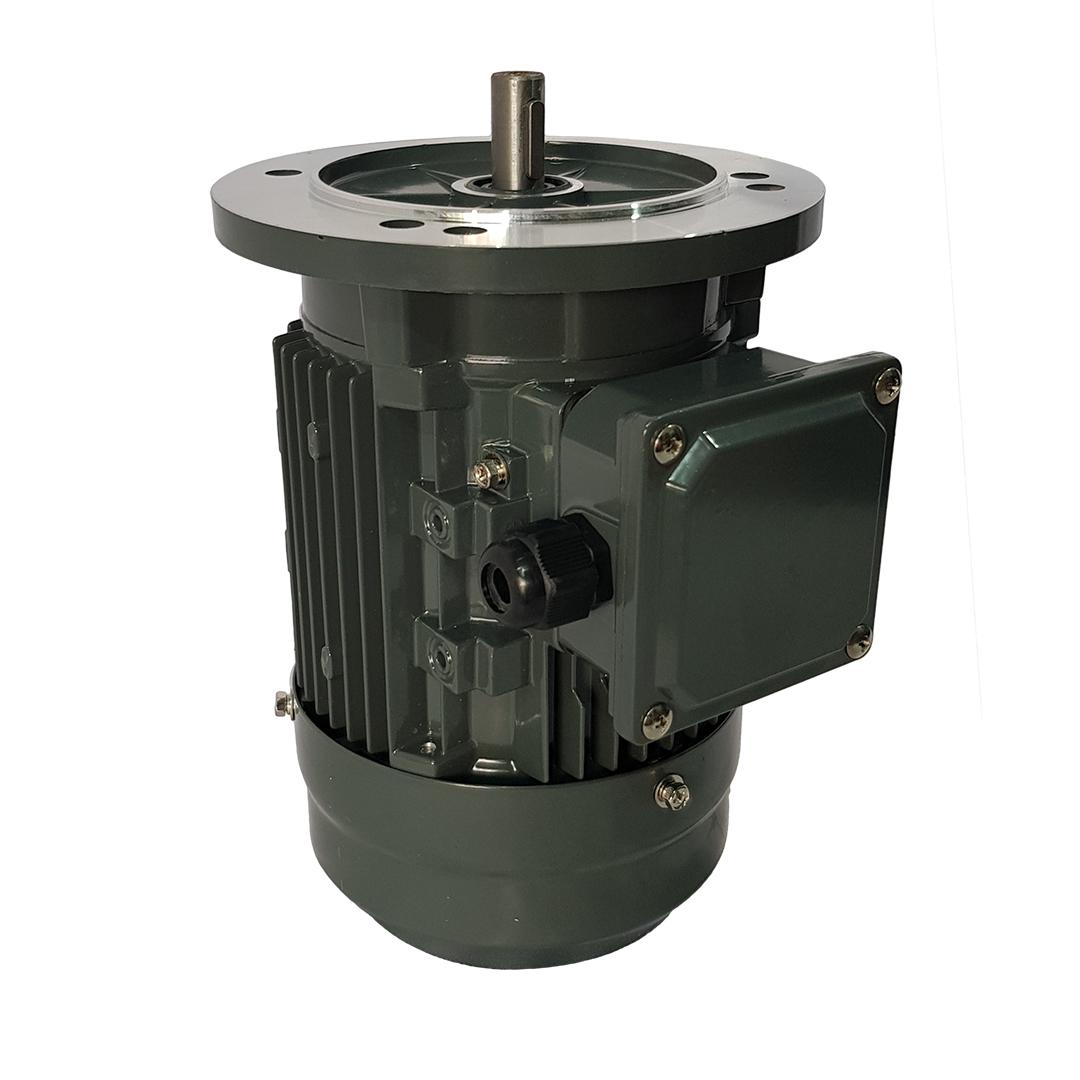 alumunium-flange-mounted-motor_01